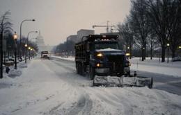 Tỷ lệ tội phạm ở Mỹ giảm mạnh trong đợt bão tuyết