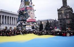 Ukraine khởi động chiến dịch bầu cử Tổng thống