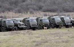 Ukraine chưa tính tới giải pháp quân sự với Nga