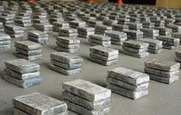 Thái Lan bắt kẻ buôn lậu hơn 300kg ma túy