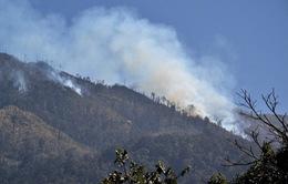 Cập nhật vụ cháy rừng quốc gia Hoàng Liên Sơn