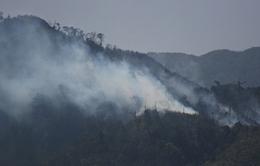 Hơn 500 người vào rừng Hoàng Liên dập lửa