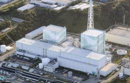 Nhật Bản tái khởi động các lò phản ứng hạt nhân