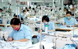 Việt Nam và Hoa Kỳ cam kết sớm kết thúc đàm phán TPP