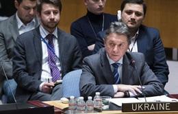 Ukraine đề nghị LHQ can thiệp