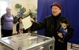 Crimea: Tỷ lệ người dân tham gia trưng cầu dân ý cao