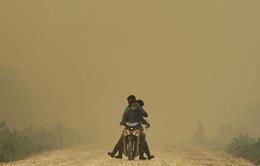 WHO: Ô nhiễm không khí liên quan đến 7 triệu ca tử vong