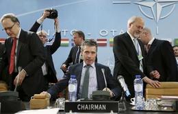 Ukraine không tìm kiếm cơ chế thành viên của NATO