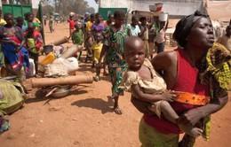 Hội đồng Bảo an LHQ triển khai lực lượng tại Cộng hòa Trung Phi