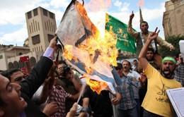Tổ chức Anh em Hồi giáo sẽ bị loại khỏi chính trường