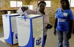 Đảng Đại hội dân tộc Phi dẫn đầu cuộc tổng tuyển cử ở Nam Phi