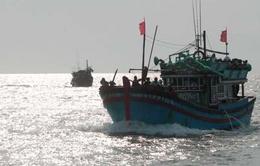 Cập nhật ngày 15/5: Tàu của ngư dân Việt Nam vẫn bám biển Hoàng Sa