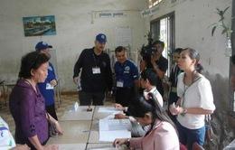 Đảng CPP dẫn đầu cuộc bầu cử hội đồng địa phương Campuchia