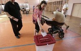 Cử tri EU đồng loạt đi bỏ phiếu bầu Nghị viện châu Âu