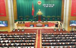 Quốc hội thảo luận dự thảo Luật phá sản (sửa đổi)