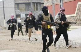 Iraq: Phiến quân Sunni tiến đánh về Thủ đô