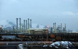Iran và nhóm P5+1 đàm phán lần thứ 5 về hạt nhân