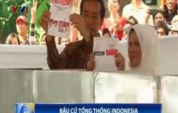 Lượng cử tri đi bỏ phiếu bầu Tổng thống Indonesia tăng đột biến