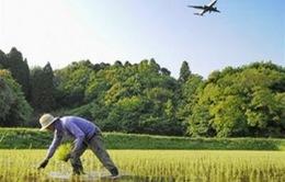 Nhật Bản công bố chiến lược cải cách nông nghiệp