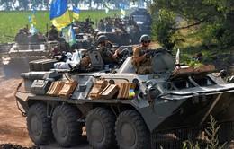 Ukraine cáo buộc Nga bắn hạ máy bay