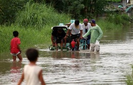 Bão Rammasun gây thiệt hại lớn tại Philippines