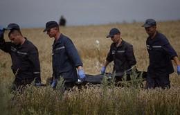Ukraine: Họp báo về việc di chuyển nạn nhân vụ rơi máy bay MH17
