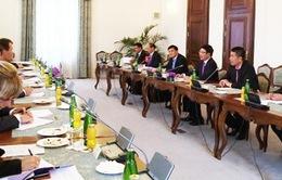 Việt Nam luôn coi trọng quan hệ hữu nghị, hợp tác với CH Czech