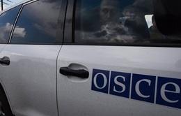 Quan sát viên OSCE có mặt tại cửa khẩu Nga - Ukraine