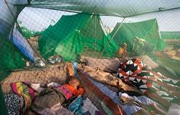 Pháp xuất lô thuốc điều trị sốt rét bán tổng hợp đầu tiên sang châu Phi