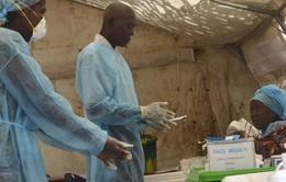 WHO hợp tác với Liên minh châu Phi ngăn chặn dịch Ebola