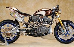 Harley Sporster Asterisk – Món lạ đầu năm