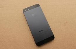 iPhone 5S có thể đặt trước từ 20/6?