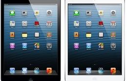 Sẽ có iPad mini giá rẻ?