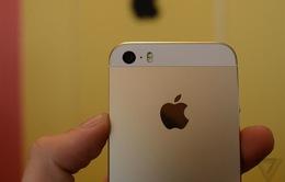 """Zoom """"cận cảnh"""" iPhone 5S vàng"""