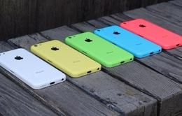 """Apple đã """"chém gió"""" về pin của iPhone 5C?"""