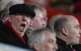 """Chê bai Gerrard, Sir Alex bị Zidane """"ném đá"""""""