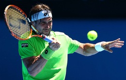 Australian Open 2014: Nole, Ferrer thắng dễ, Tommy Haas bất ngờ dừng bước