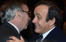 """Ballon d'Or 2013: Michel Platini """"phàn nàn"""" về thất bại của Ribery"""