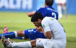Tin chuyển nhượng 02/7: Nhà cái tin Barcelona sẽ có Suarez