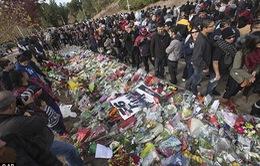 Hoa và nến tràn ngập nơi Paul Walker tử nạn