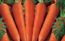 Cà rốt bảo vệ dạ dày