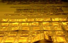 Phiên đấu thầu vàng miếng thứ 5 cao kỷ lục