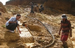 Quảng Nam: Gần 1 tấn quặng vàng bị thu giữ