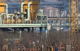 FDI Trung Quốc tiếp tục tăng trưởng trong tháng 3