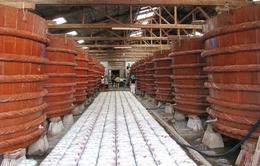 Trung Quốc hút nguồn hàng cá cơm