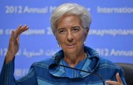 Tổng Giám đốc IMF có nguy cơ mất chức