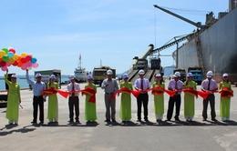 Cảng Cam Ranh đưa vào khai thác cầu tàu 50.000 DWT