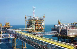Ngành dầu khí tìm kiếm cơ hội mua bán sáp nhập
