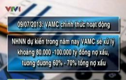 VAMC chính thức hoạt động