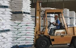 Bộ NN&PTNT đề nghị xuất khẩu đường trắng